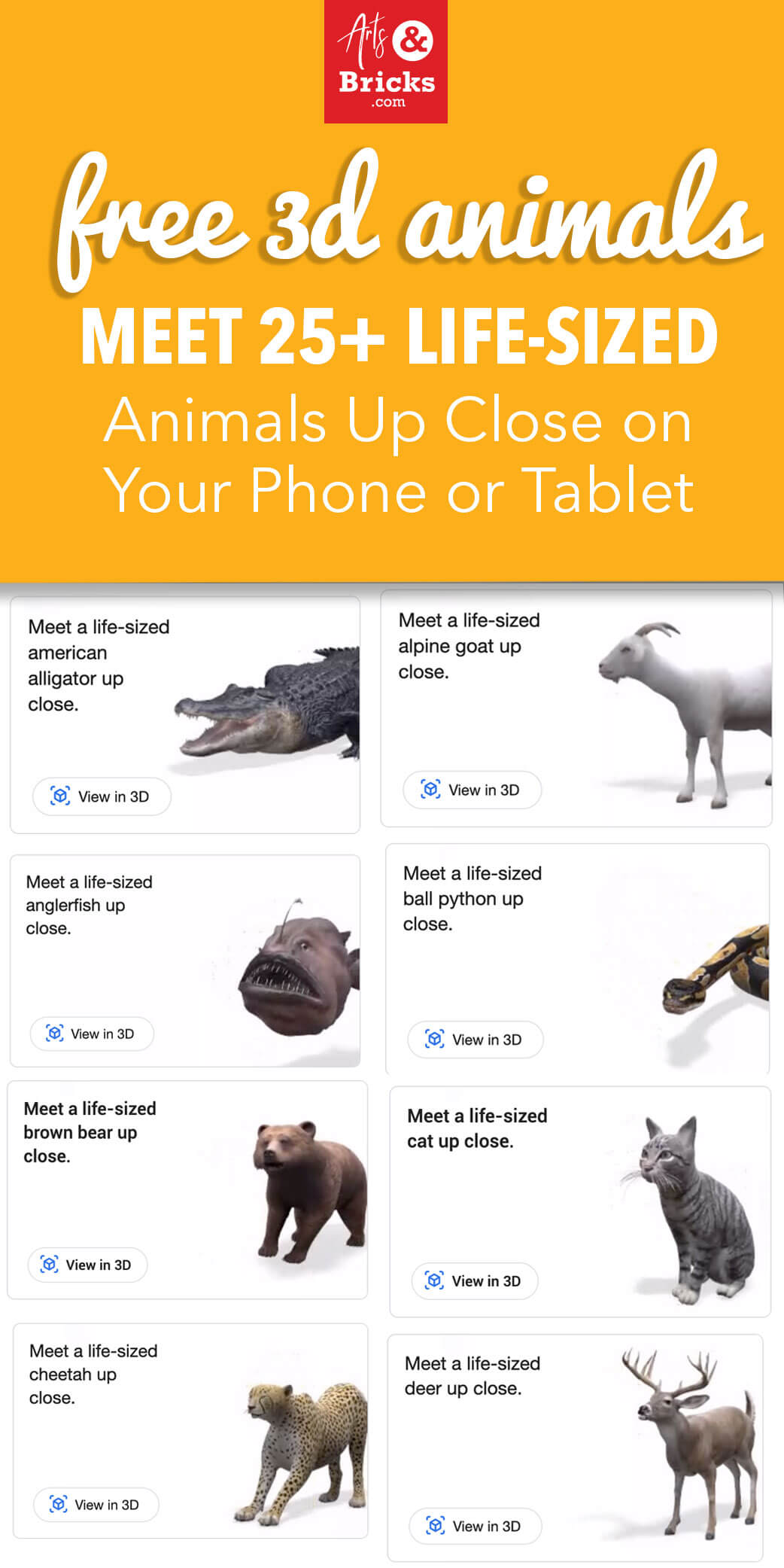 Free 3D Animals - Meet 25+ Life-Sized Animals Up Close on Your Phone or Tablet