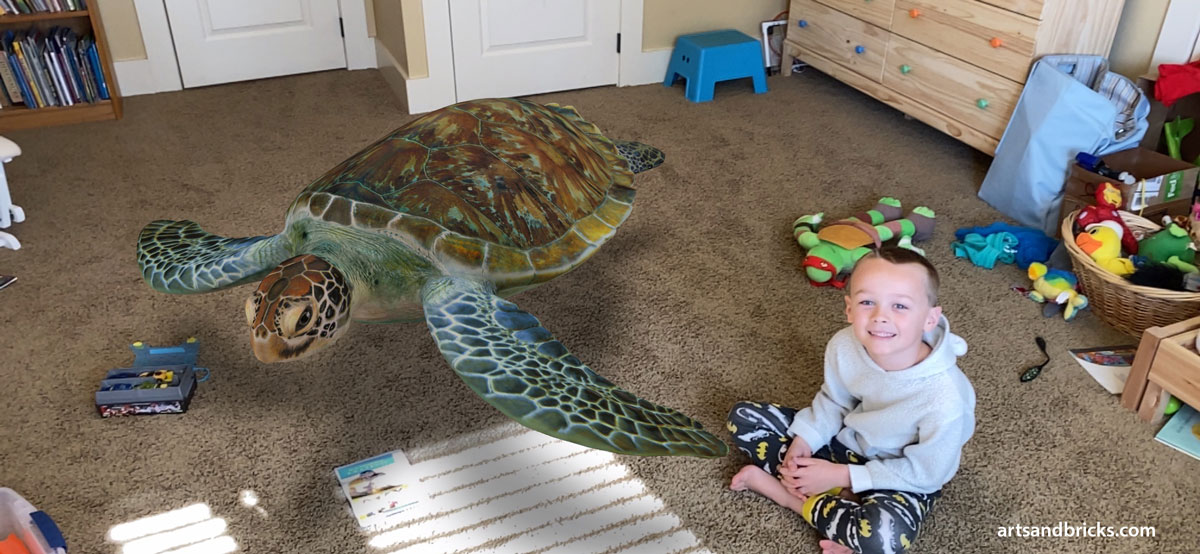 3D Turtle in Kid's Bedroom